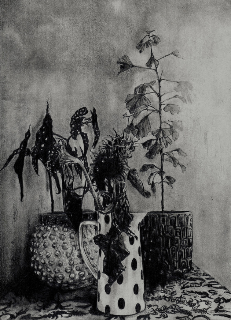 Plants Mindre
