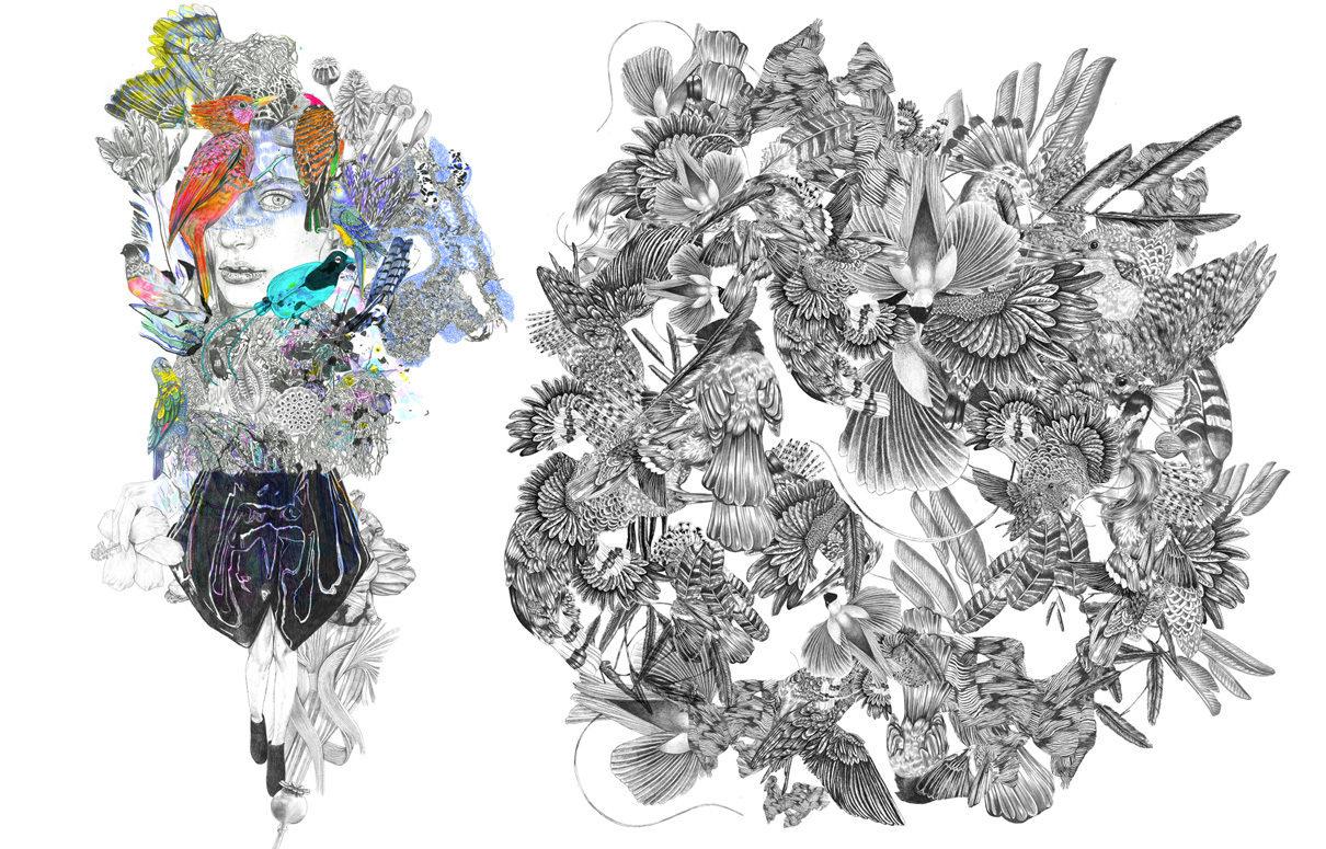 Fendi Birdgirl Sketches Combo